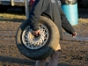 enduro-mercer-raceway-jan-2012-007