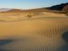 mesquite-flat-dunes-1